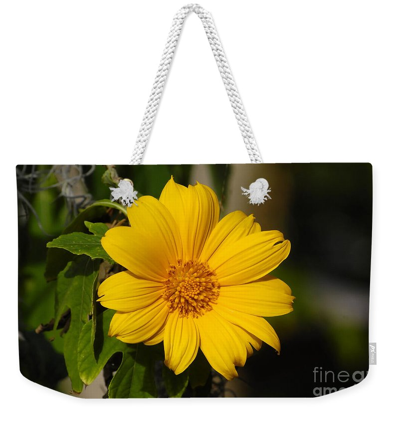 Yellow Weekender Tote Bag featuring the photograph Beautiful In Yellow by David Lee Thompson