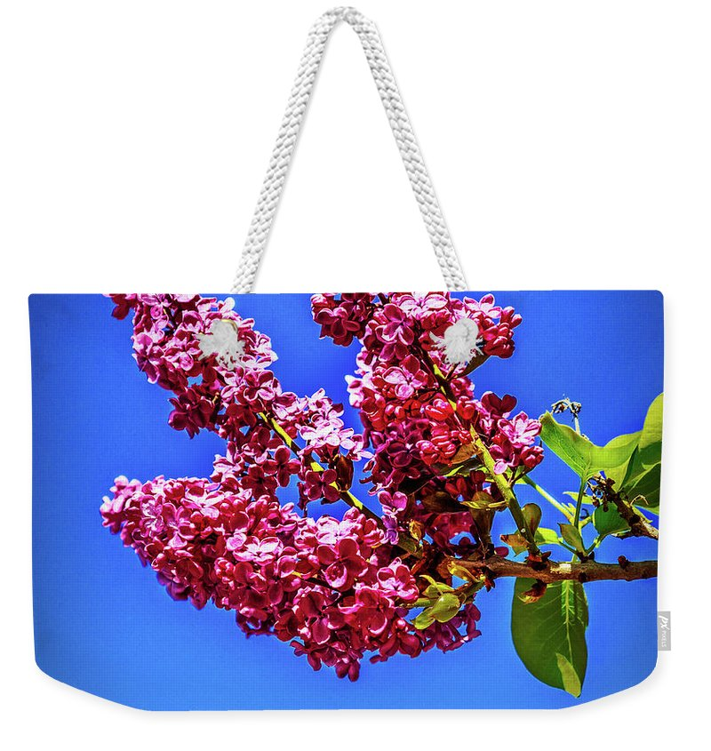 Lilac Weekender Tote Bag featuring the photograph Beautiful Lilac by Robert Bales