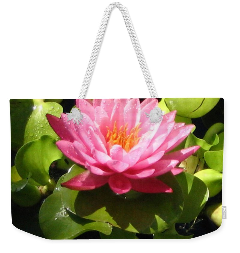 Nature Weekender Tote Bag featuring the photograph Beautiful by Line Gagne