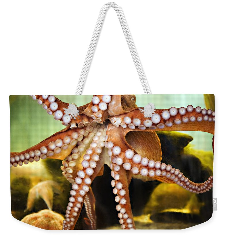 Octopus Weekender Tote Bag featuring the photograph Beautiful Octopus by Marilyn Hunt