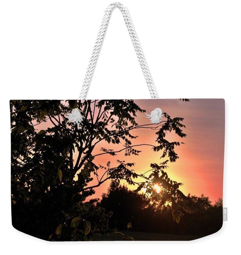 Tree Weekender Tote Bag featuring the photograph Beautiful Park Sunset View Trees by Matt Harang