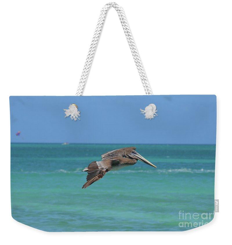 Pelican Weekender Tote Bag featuring the photograph Beautiful Pelican Flying Over Aqua Waters In Aruba by DejaVu Designs