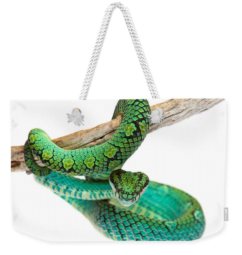 Viper Weekender Tote Bags