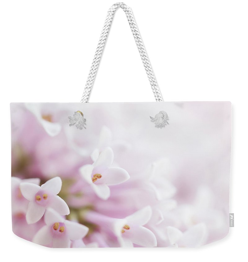 Blossom Weekender Tote Bag featuring the mixed media Beautiful Tender Gentle Delicate Flower by Valdecy RL