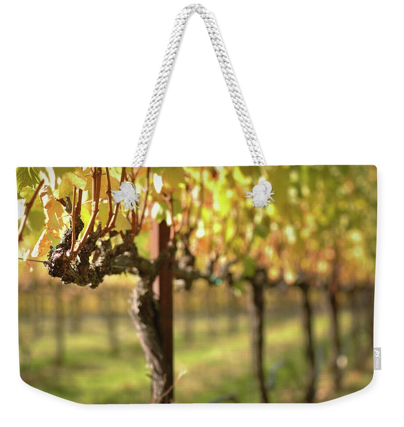 Green Weekender Tote Bag featuring the photograph Beautiful Vineyard In Napa Valley by Brandon Bourdages