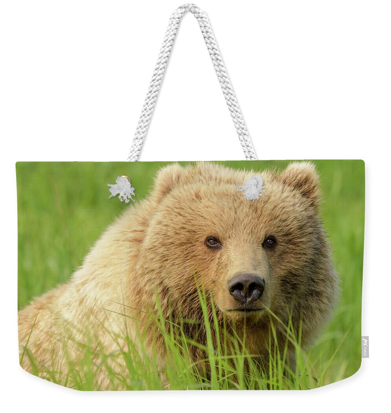 Beauty Weekender Tote Bag featuring the photograph Beauty by Chad Dutson