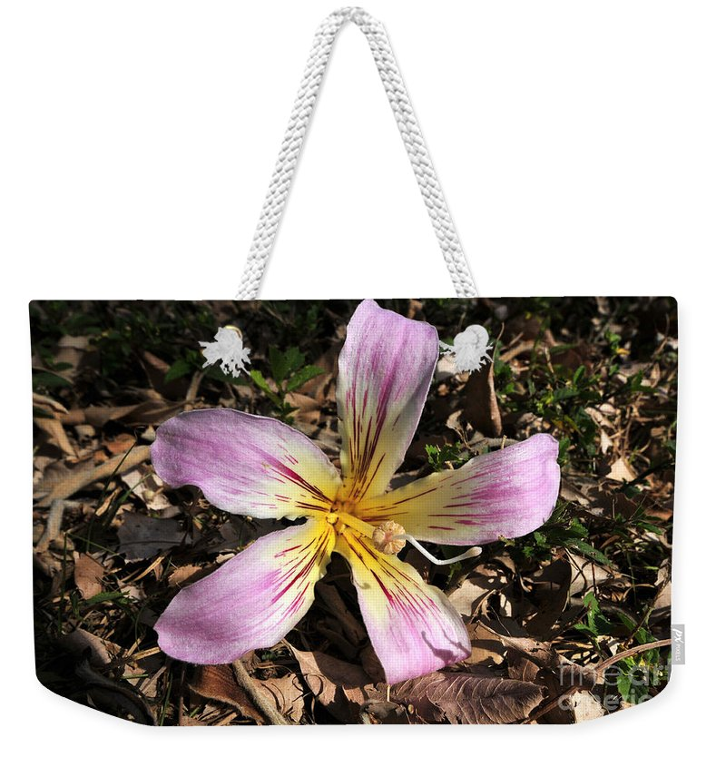 Beautiful Weekender Tote Bag featuring the photograph Beauty From Above by David Lee Thompson