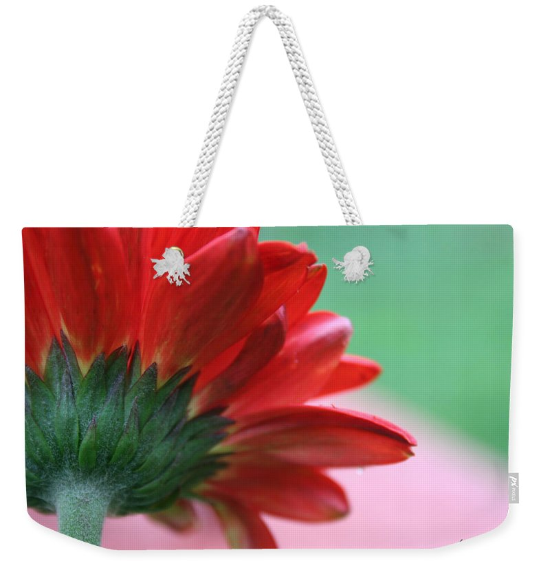 Flowers Weekender Tote Bag featuring the photograph Beauty From Behind by Linda Sannuti