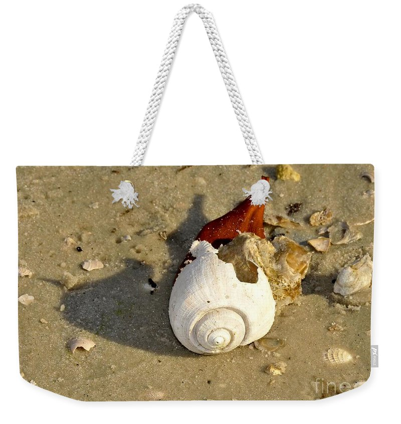 Shell Weekender Tote Bag featuring the photograph Beauty From The Sea by David Lee Thompson