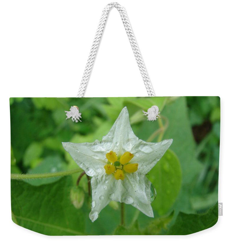 Green Flower White Water Drop Weekender Tote Bag featuring the photograph Beauty In All Sizes by Luciana Seymour