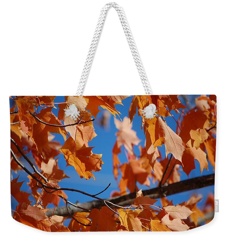 Leaves Weekender Tote Bag featuring the photograph Beauty In Nature by Robert Meanor