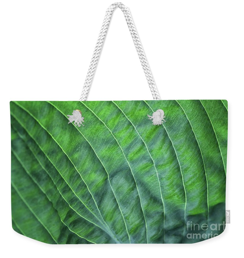 Hosta Weekender Tote Bag featuring the photograph Beauty In The Shadows by Karen Adams