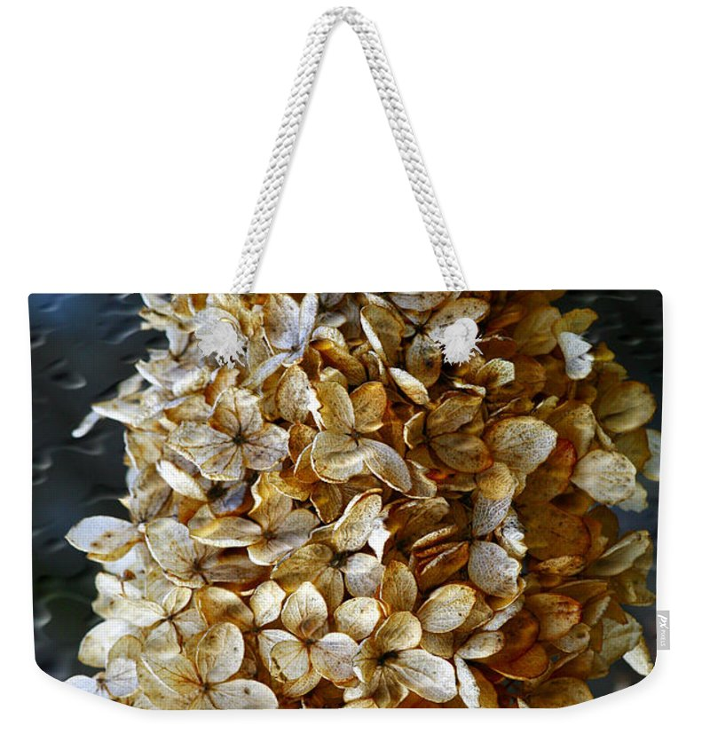 Flower Weekender Tote Bag featuring the photograph Beauty Of Old by Deborah Benoit