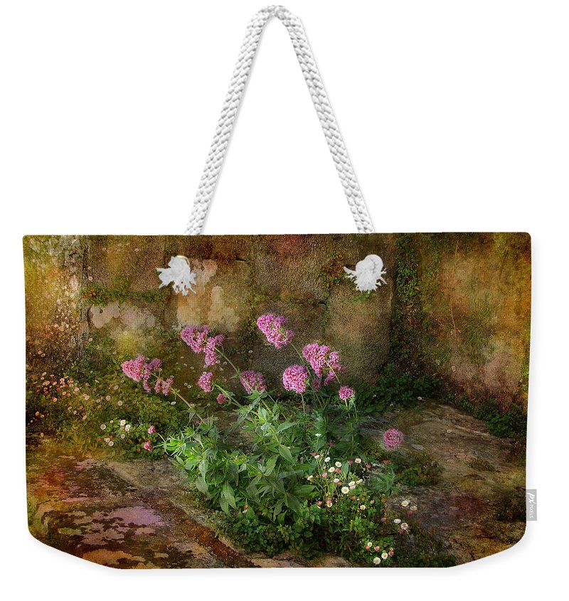 Stone Weekender Tote Bag featuring the photograph Beauty On An Old Stone Wall by Carla Parris