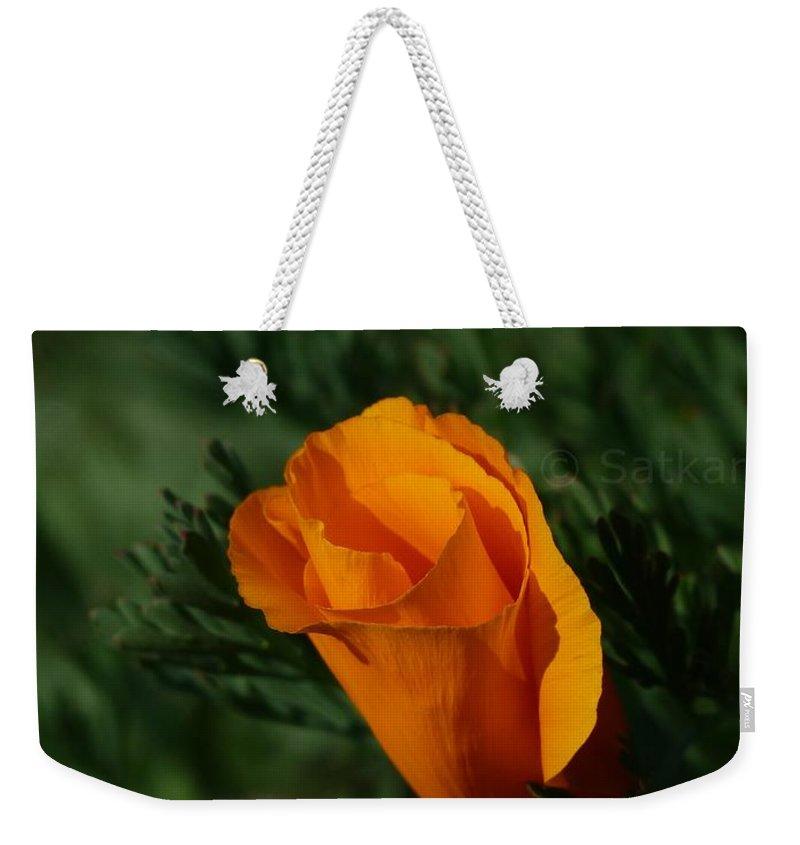 Flowers Weekender Tote Bag featuring the photograph Beauty by Satish Kumar