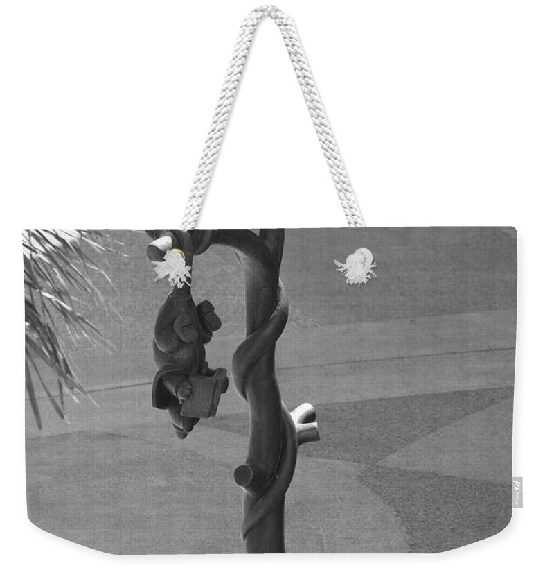 Black And White Weekender Tote Bag featuring the photograph Beavers Bats And Squirrels by Rob Hans
