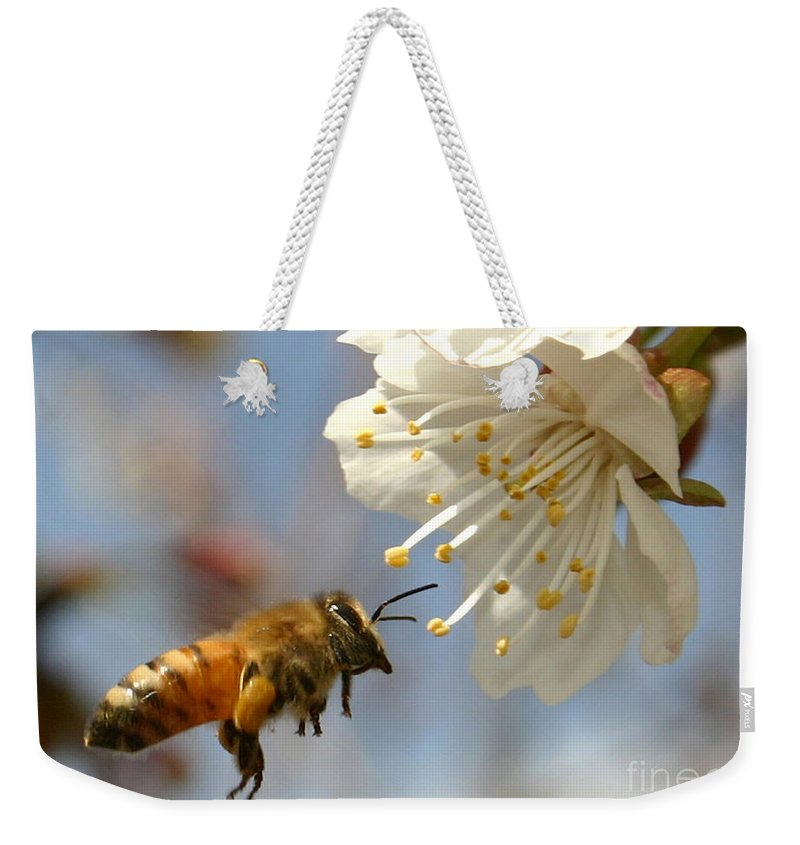 Honey Weekender Tote Bag featuring the photograph Bee And A Blossom by Danny Yanai