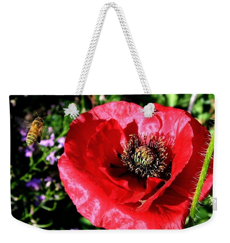 Bee Weekender Tote Bag featuring the photograph Bee And Red Poppy by Will Borden