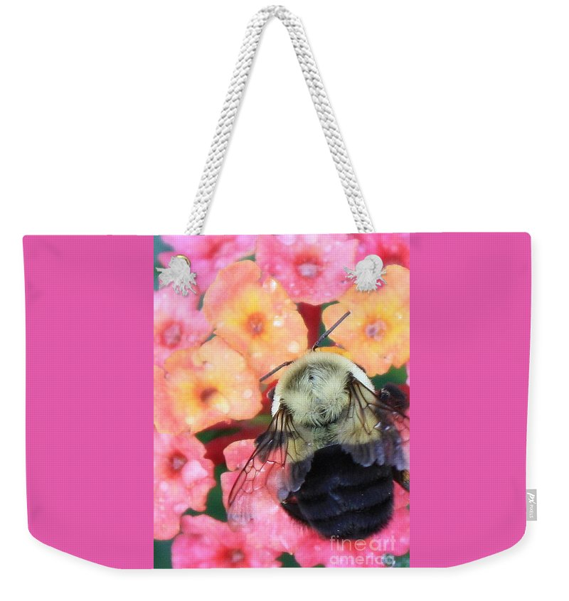 Bee Weekender Tote Bag featuring the photograph Bee Card by Carol Groenen