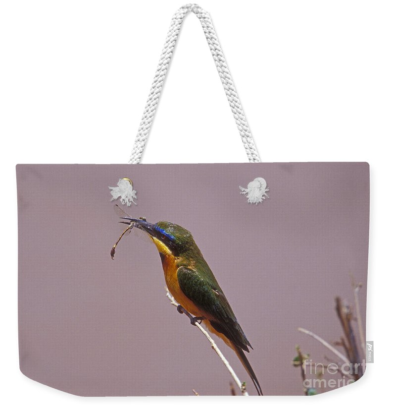 African Birds Weekender Tote Bag featuring the photograph Bee Eater And Dragonfly by Sandra Bronstein