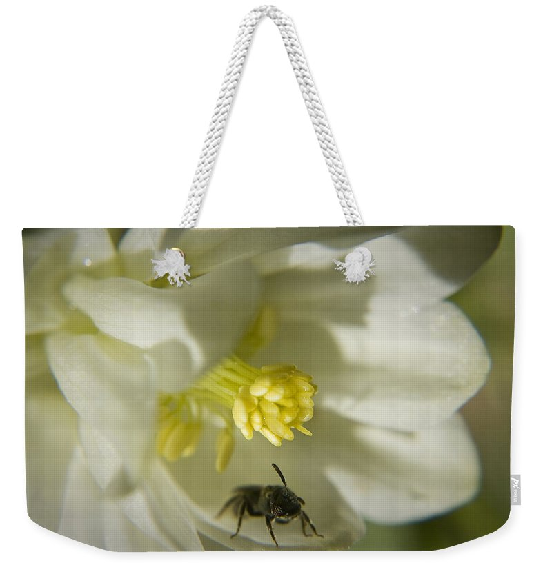 Columbine Weekender Tote Bag featuring the photograph Bee Mine by Teresa Mucha