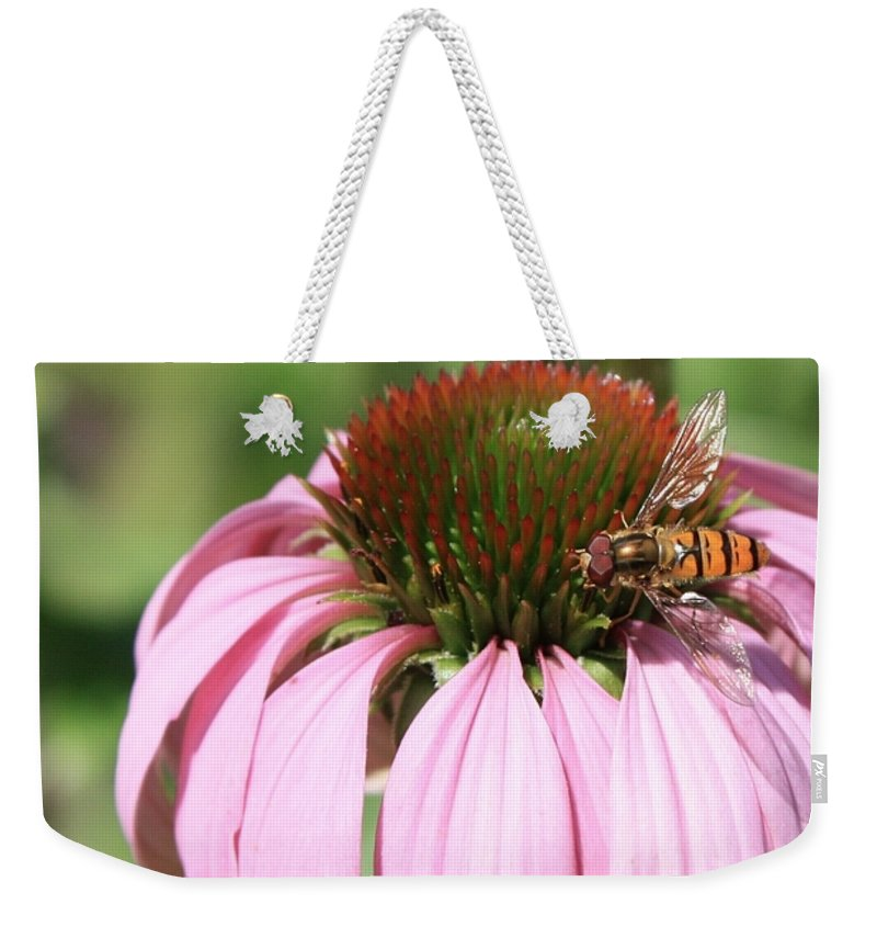 Echinacea Weekender Tote Bag featuring the photograph Bee On Echinacea by Carol Groenen