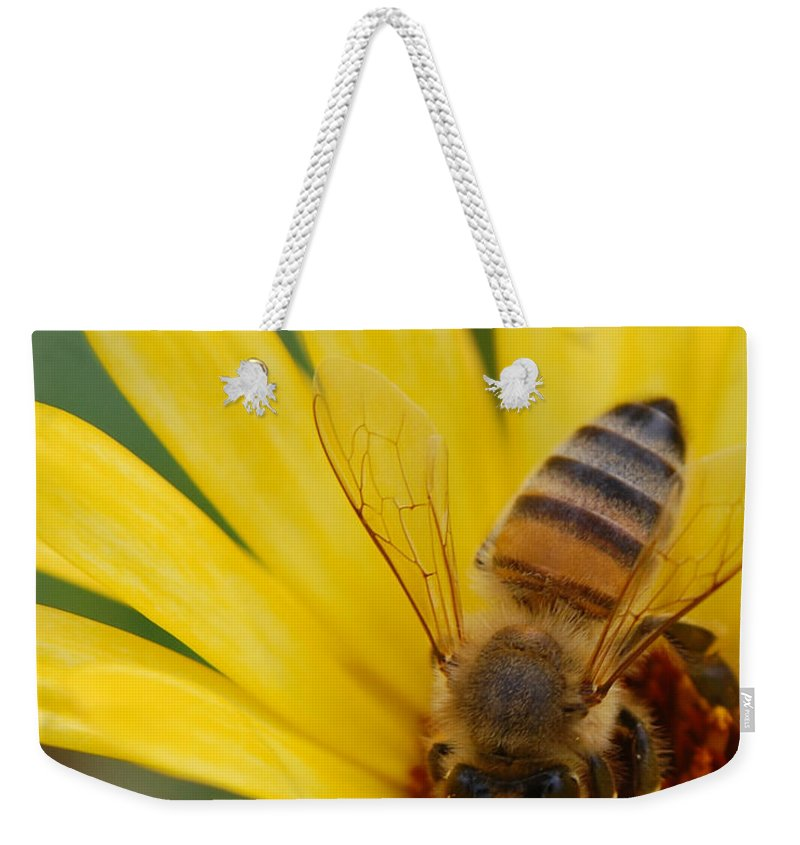Bee Weekender Tote Bag featuring the photograph Bee On Flower by Amy Fose