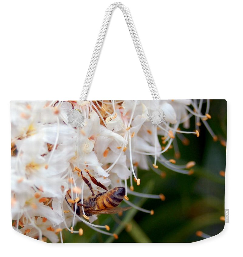 Flower Weekender Tote Bag featuring the photograph Bee On Flowers 1 by Amy Fose