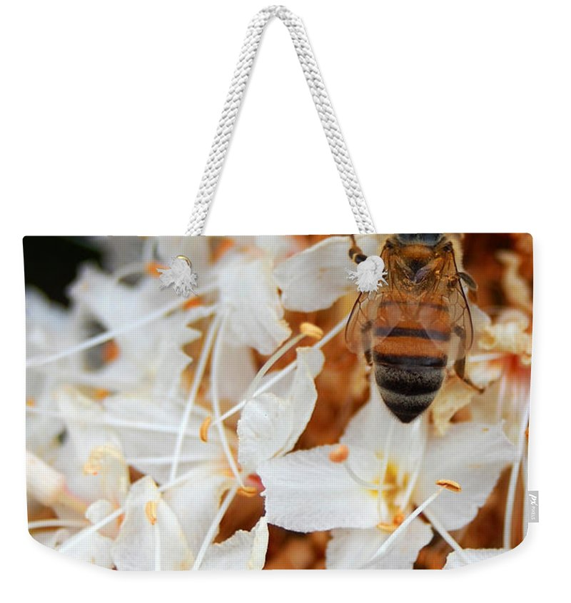 Flower Weekender Tote Bag featuring the photograph Bee On Flowers 2 by Amy Fose