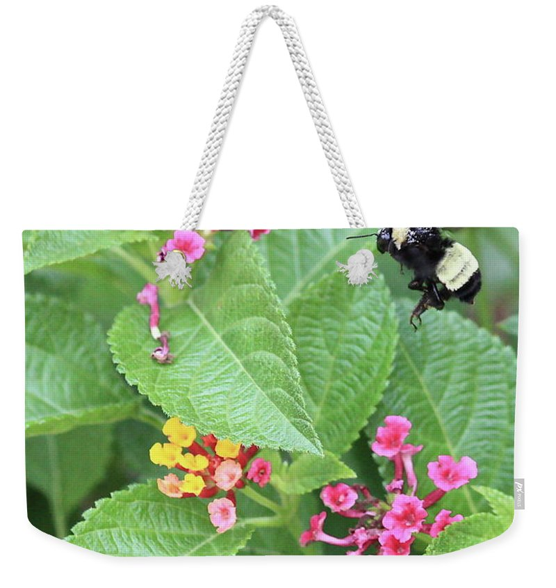 Bee Weekender Tote Bag featuring the photograph Beeing Amongst The Flowers by Carol Groenen