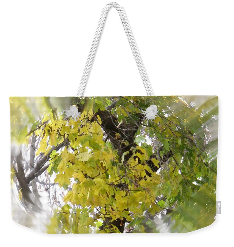 Abstract Weekender Tote Bag featuring the photograph Before All The Leaves Fell by Ian MacDonald