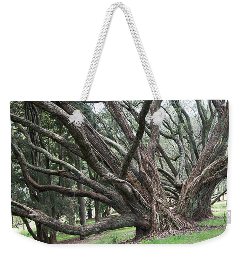 Weekender Tote Bag featuring the photograph Before by Martin Capek