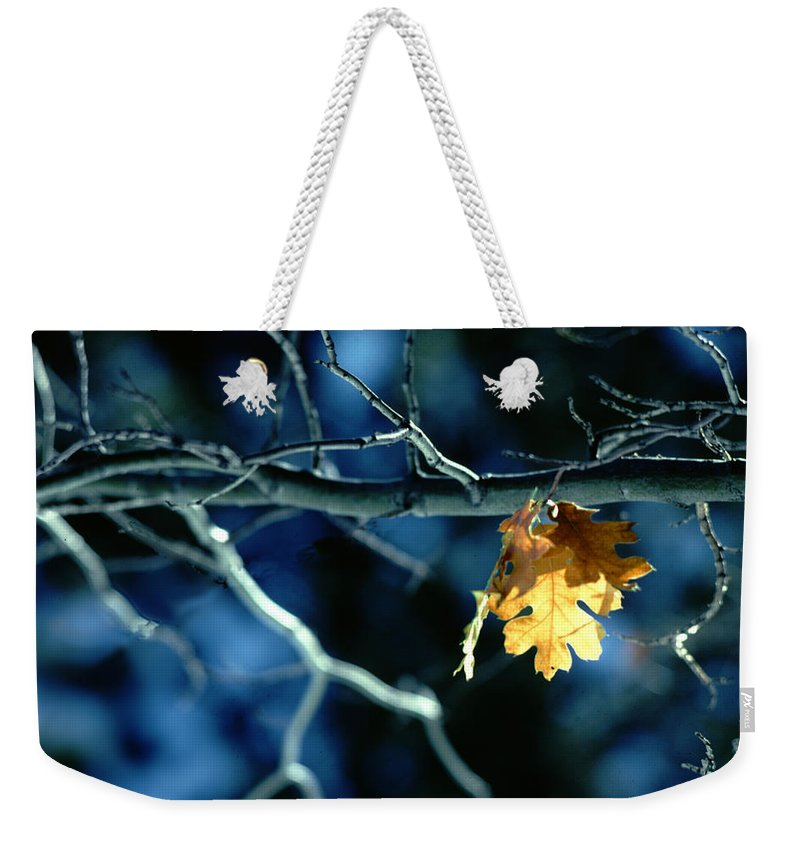 Photography Weekender Tote Bag featuring the photograph Before The Fall by Paul Wear