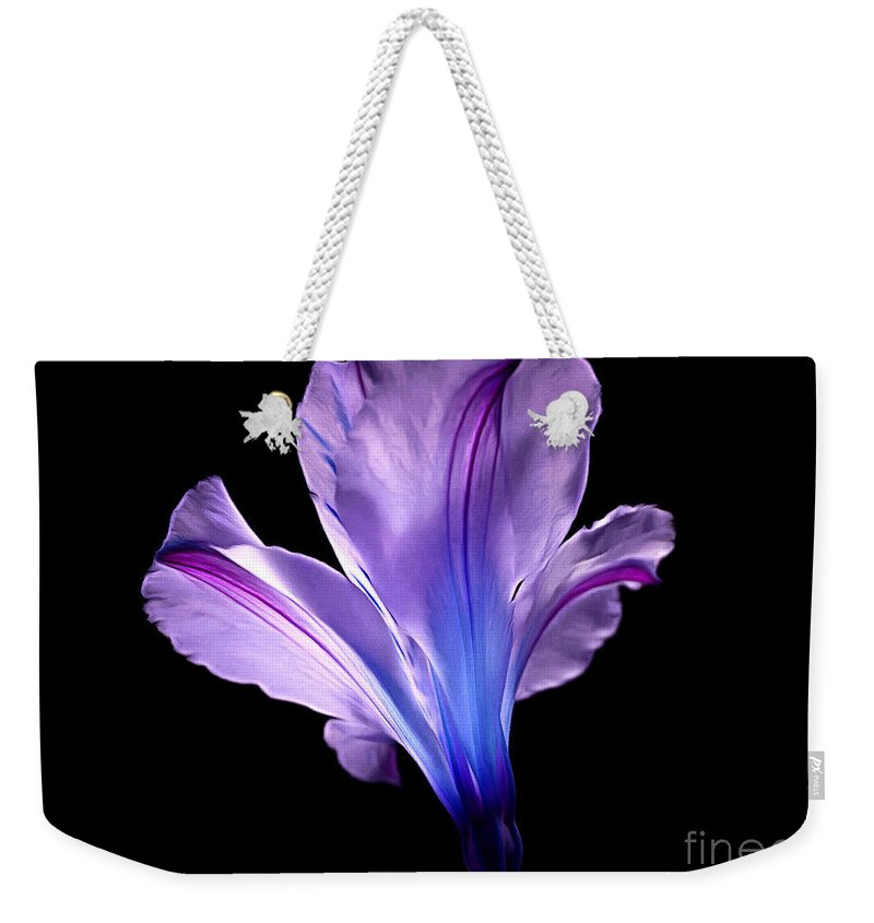 Amaryllis Weekender Tote Bag featuring the photograph Beginning Of Love by Krissy Katsimbras