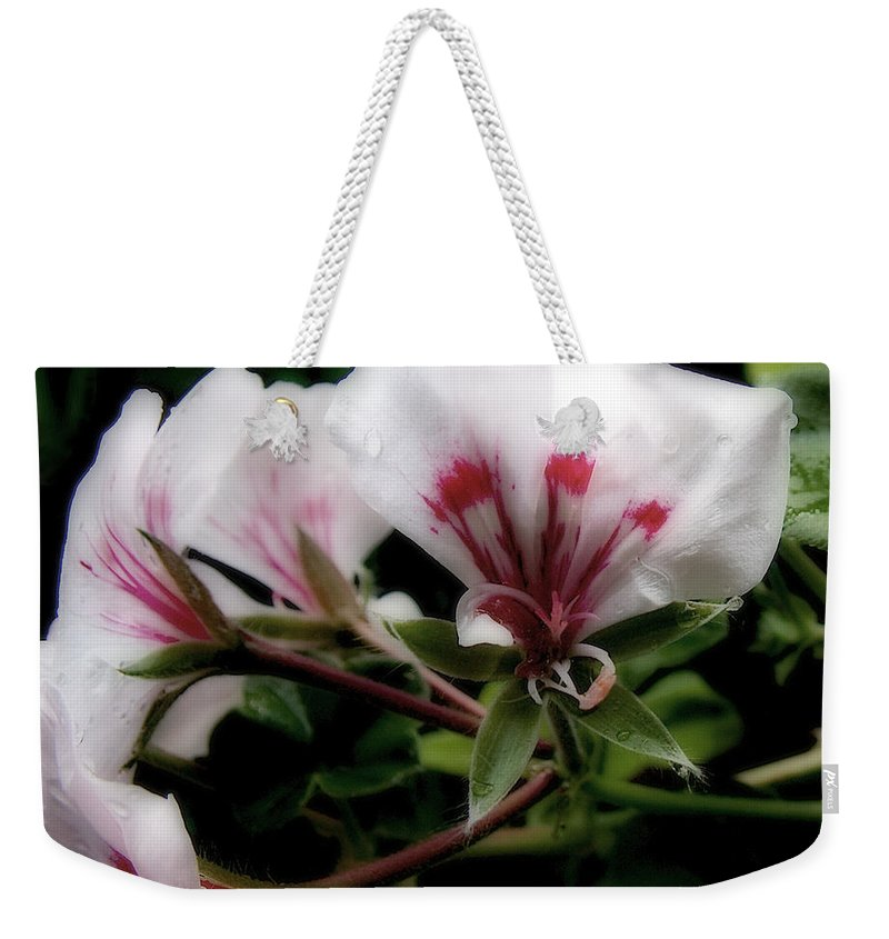 Cherry Weekender Tote Bag featuring the photograph Bejewelled by RC DeWinter