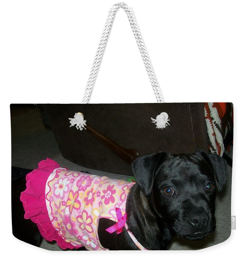 Black Weekender Tote Bag featuring the photograph Bella In Swimsuit by Jewel Hengen