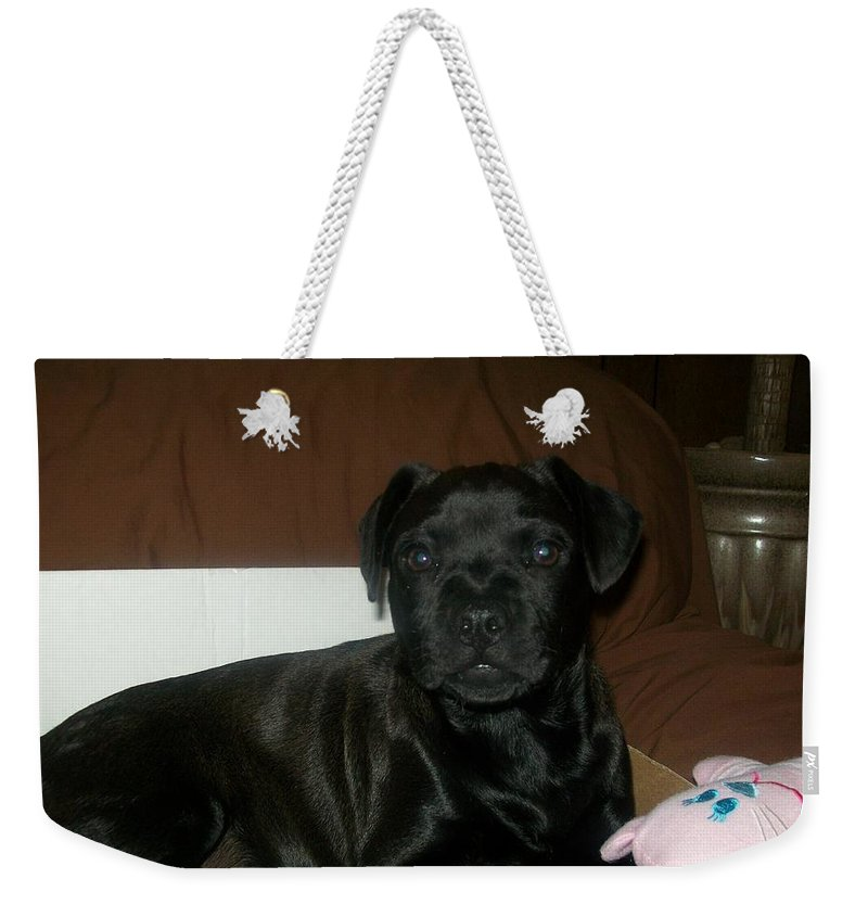Black Weekender Tote Bag featuring the photograph Bella by Jewel Hengen