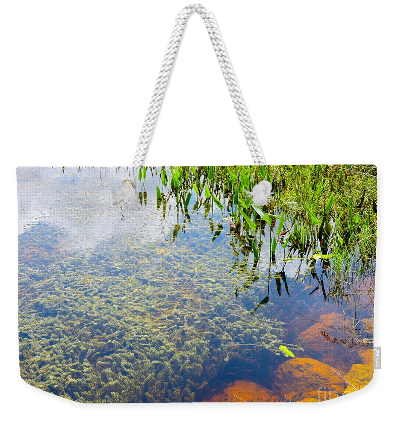 Pond Weekender Tote Bag featuring the photograph Below The Surface by Marilee Noland
