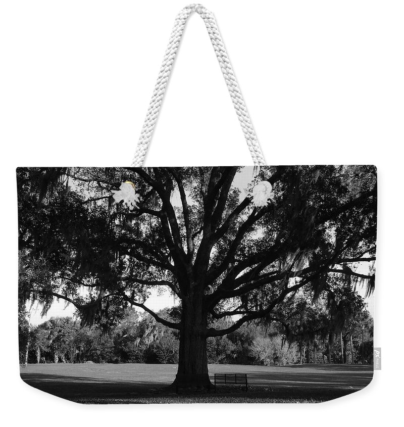 Park Bench Weekender Tote Bag featuring the photograph Bench Under Oak by David Lee Thompson