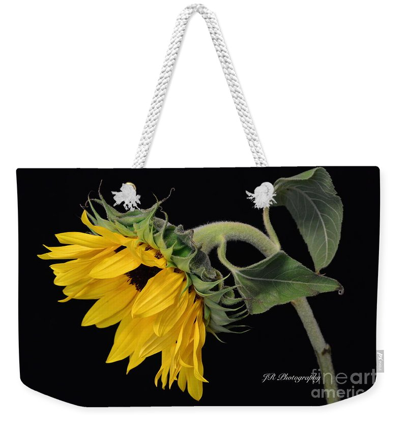 Bloom Weekender Tote Bag featuring the photograph Bending Sunflower by Jeannie Rhode