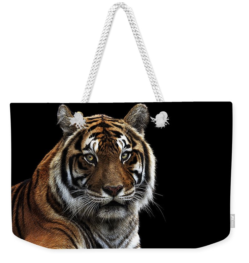 Bengal Tiger Weekender Tote Bag featuring the photograph Bengal Tiger by Janet Fikar