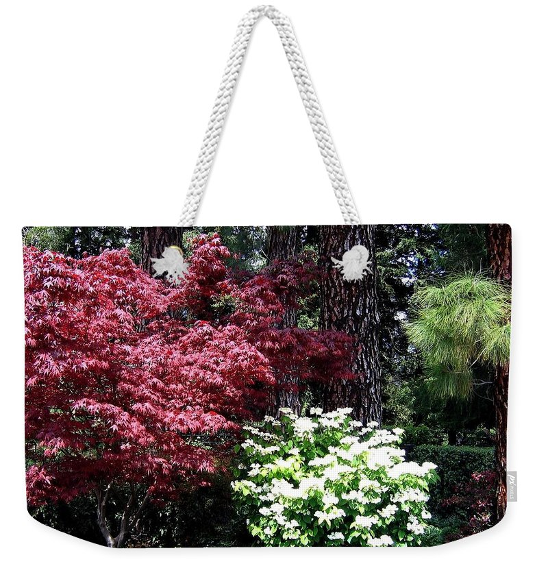 Gardens Weekender Tote Bag featuring the photograph Beringer Winery Gardens by Will Borden
