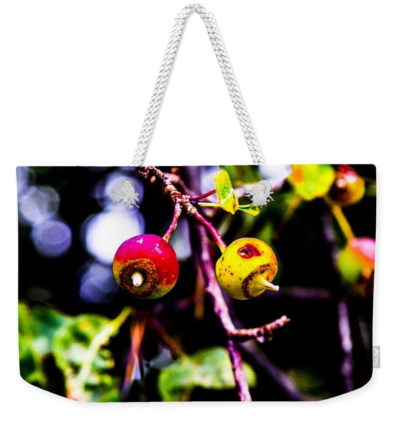 University Of Idaho Arboretum Weekender Tote Bag featuring the photograph Berries by Angus Hooper Iii