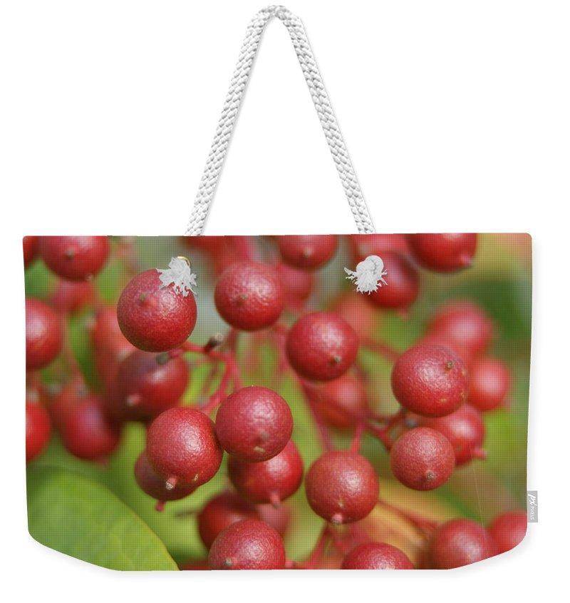 Macro Weekender Tote Bag featuring the photograph Berries by Heidi Poulin