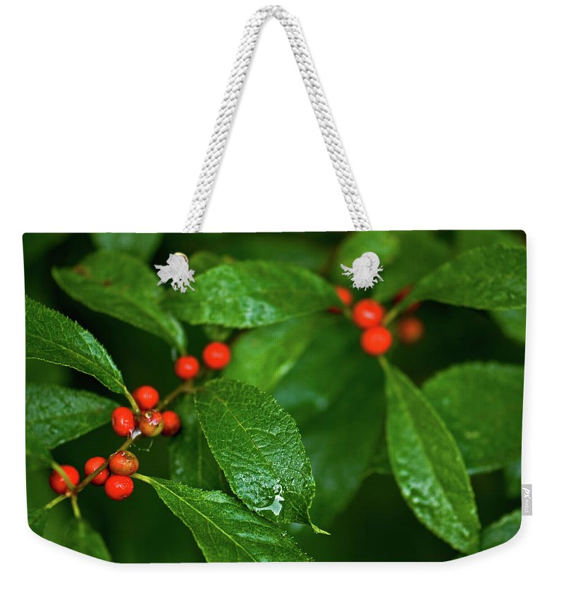 wild Berry's Weekender Tote Bag featuring the photograph Berry's by Paul Mangold