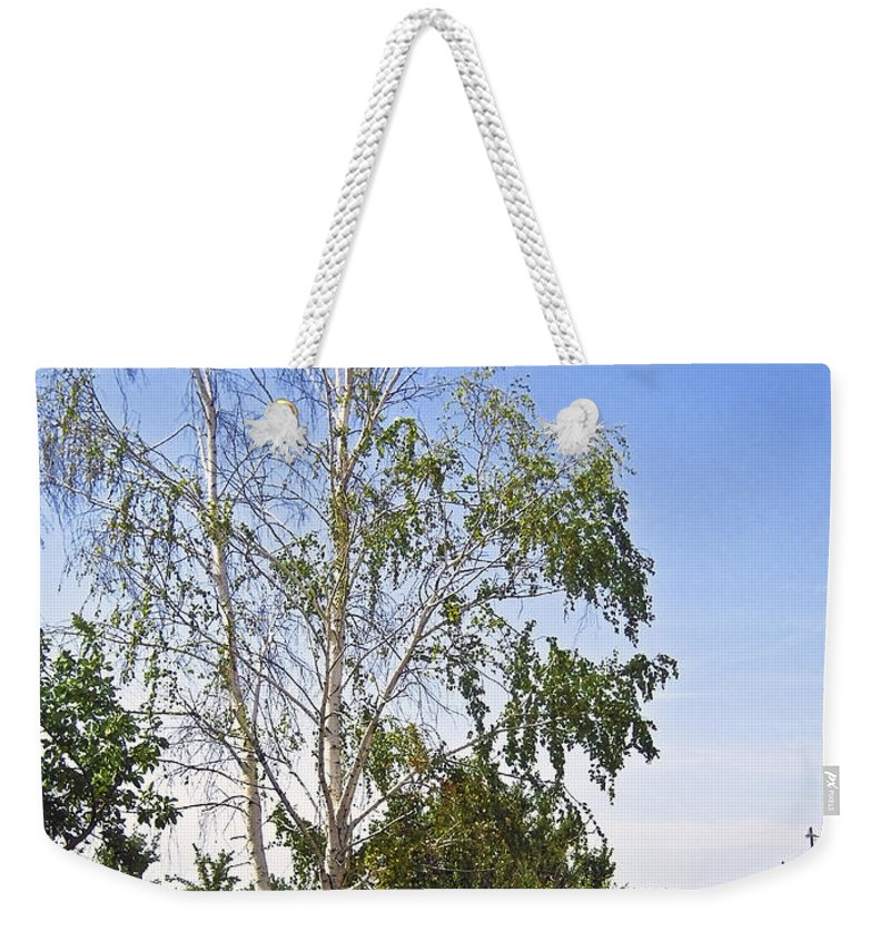 Birch Weekender Tote Bag featuring the photograph Beside The Village Road by Svetlana Sewell