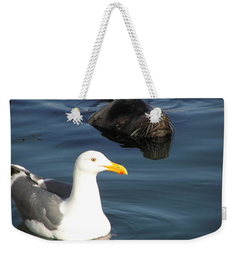 Seagull Weekender Tote Bag featuring the photograph Best Friends by Louise Magno