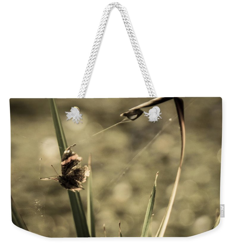 Butterfly Weekender Tote Bag featuring the photograph Betrayal by Kristin Hunt