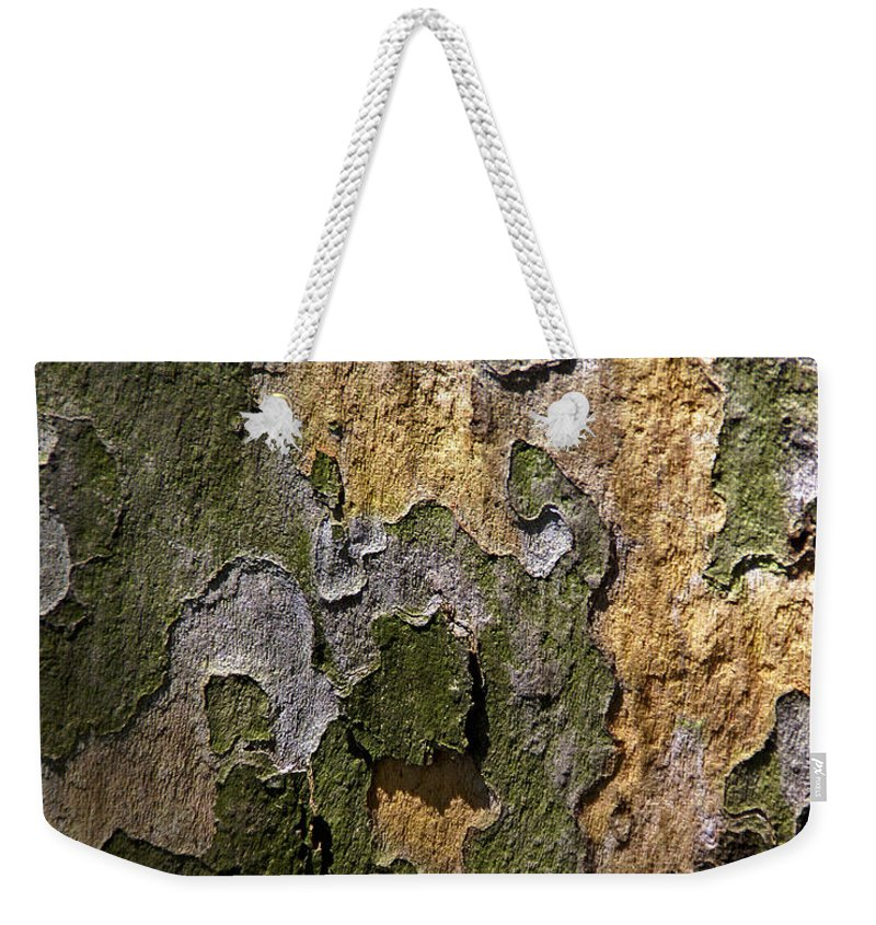 Bark Weekender Tote Bag featuring the photograph Between Light And Shadow by Lynda Lehmann