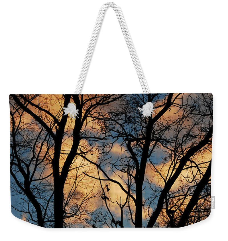 Landscape Weekender Tote Bag featuring the photograph Beyond The Trees by Lori Tambakis